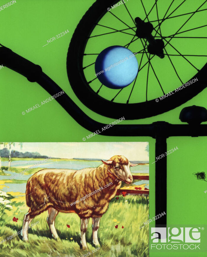 Stock Photo: A picture of a sheep, a ball and parts of a bicycle.