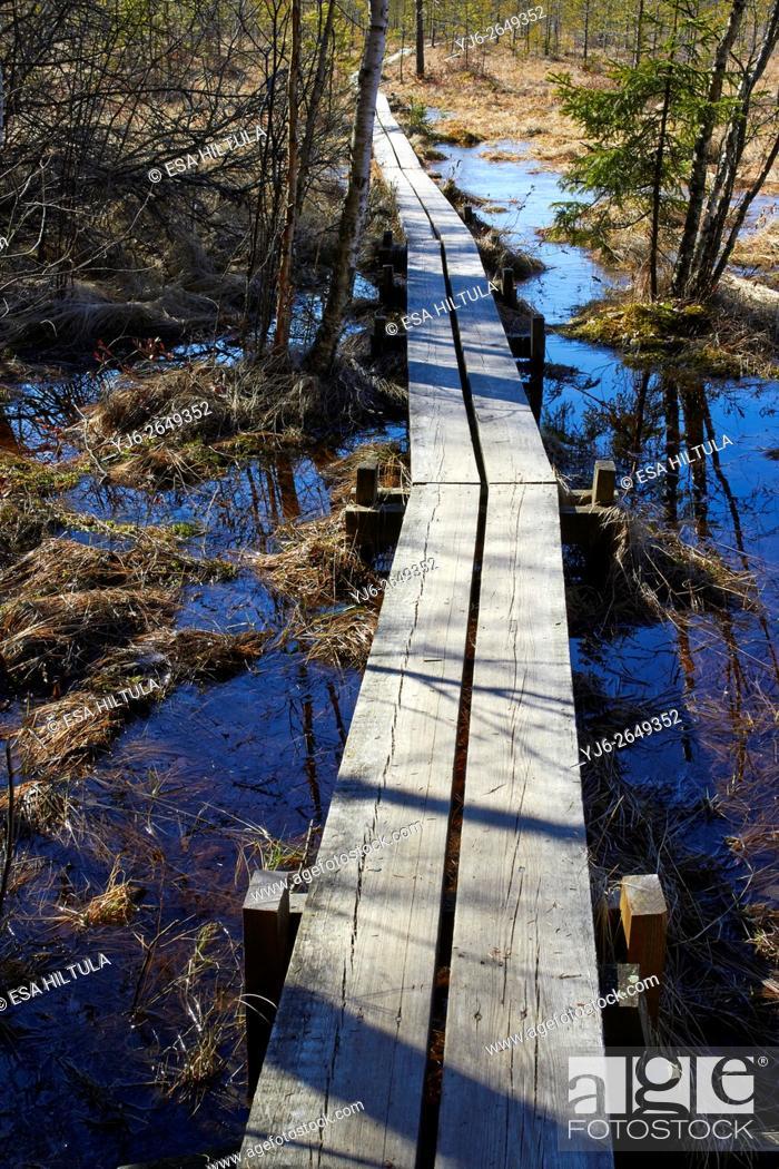 Stock Photo: duckboard on swamp, Lappeenranta Finland.