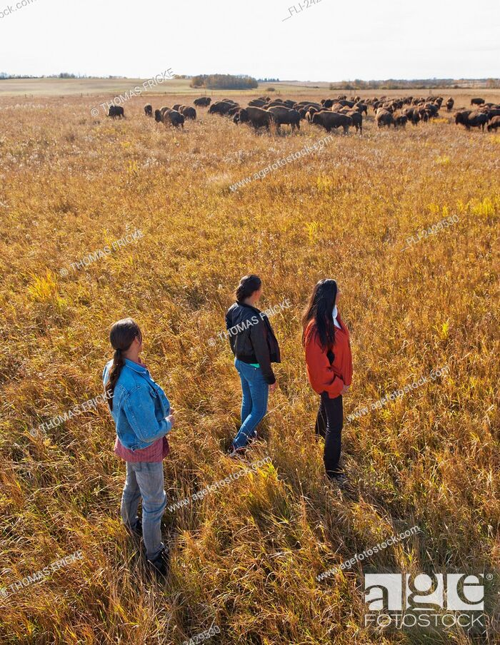 Imagen: Native American family walking through a buffalo ranch; Rossburn, Manitoba, Canada.