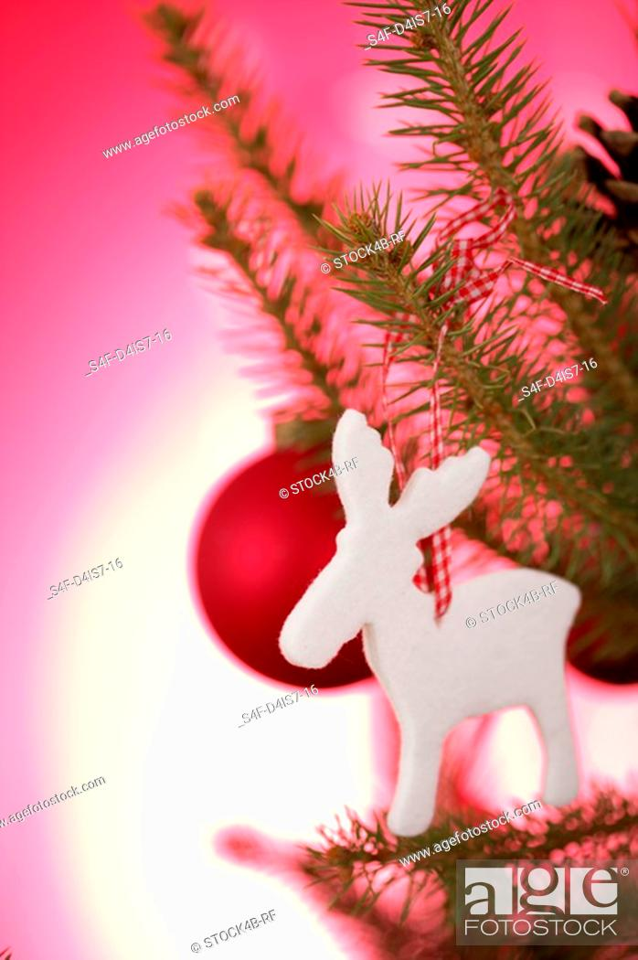 Stock Photo: Ornament on Christmas tree.