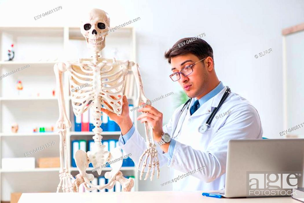 Stock Photo: Yong male doctor with skeleton isolated on white.