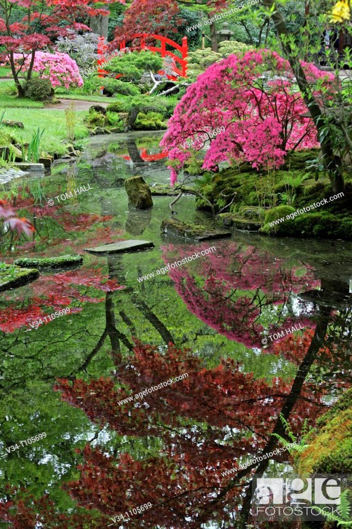 Stock Photo: Japanese Garden.
