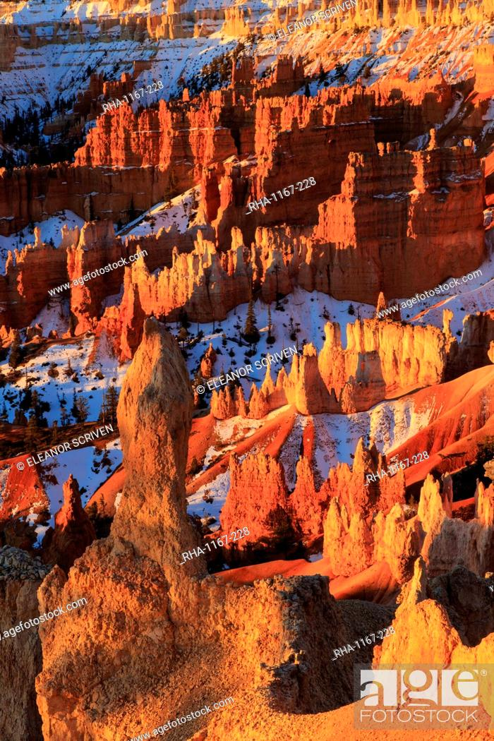 Stock Photo: Hoodoos and snow lit by strong dawn light, Queen's Garden Trail at Sunrise Point, Bryce Canyon National Park, Utah, United States of America, North America.