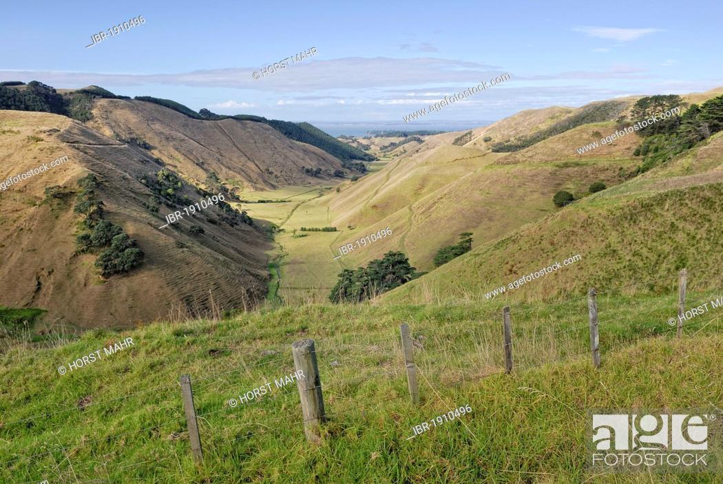 Stock Photo: Valley and pastures on the Lees Gully Road, Manukau Peninsula, North Island, New Zealand.