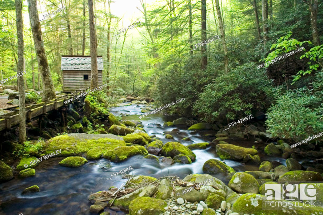 Stock Photo: Reagan Tub Mill on Roaring Fork, Great Smoky Mtns National Park, TN.