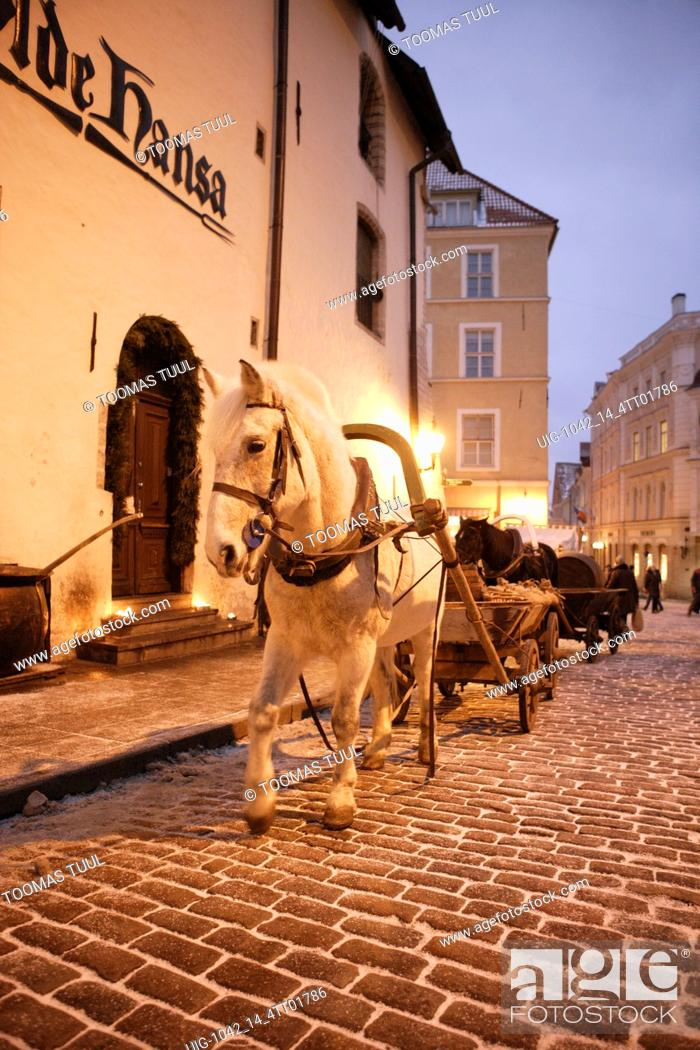 Stock Photo: A Horse Carriage in front of Olde Hansa Restaurant.