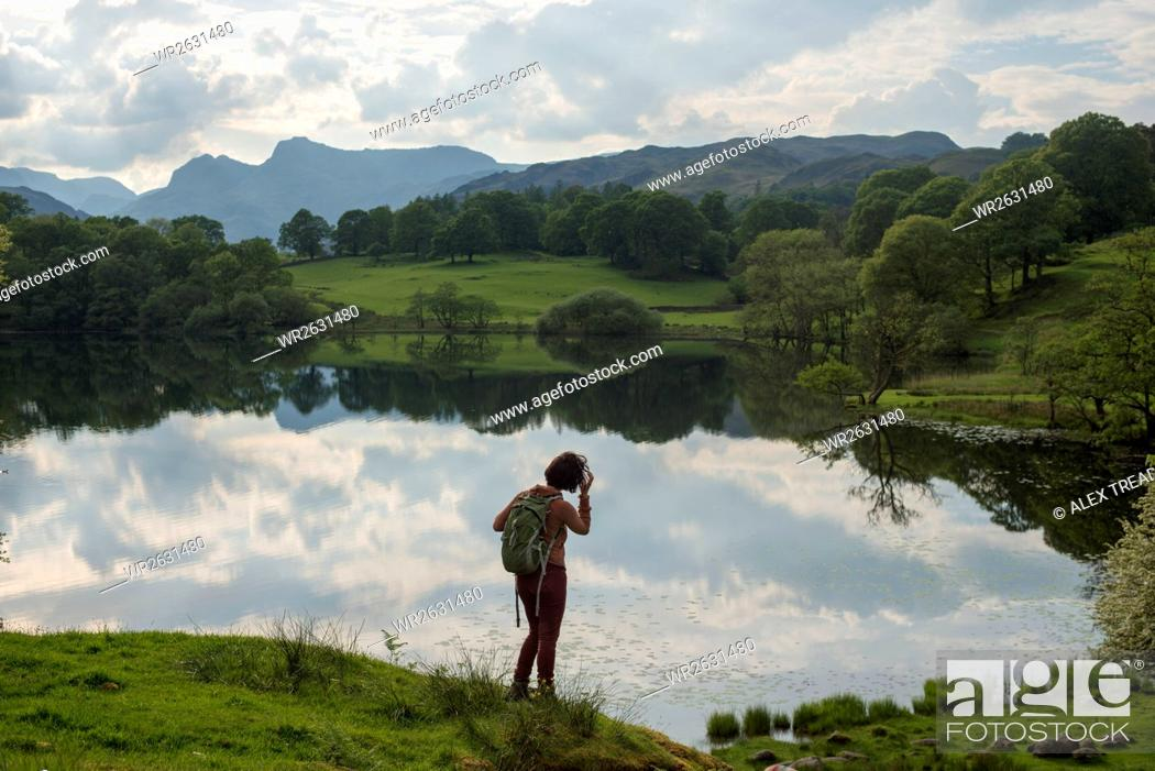 Stock Photo: A woman looks out over Tarn Foot, Lake District National Park, Cumbria, England, United Kingdom, Europe.