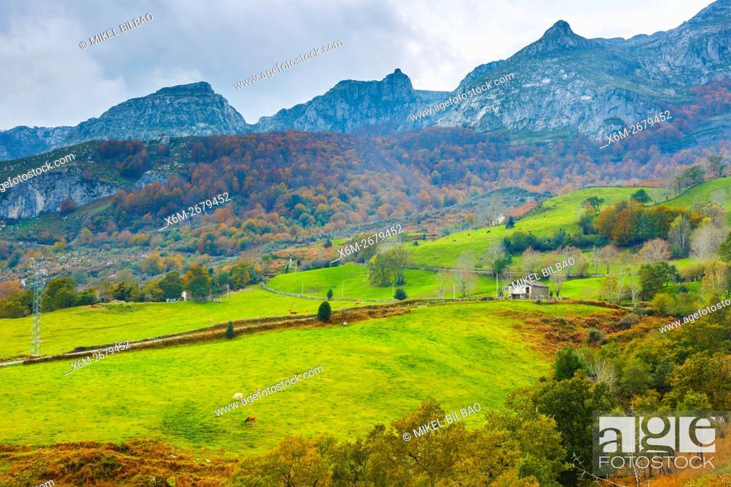 Stock Photo: Beechwoods and meadows. La Sia mountain pass. Collados del Ason Natural Park. Cantabria, Spain.