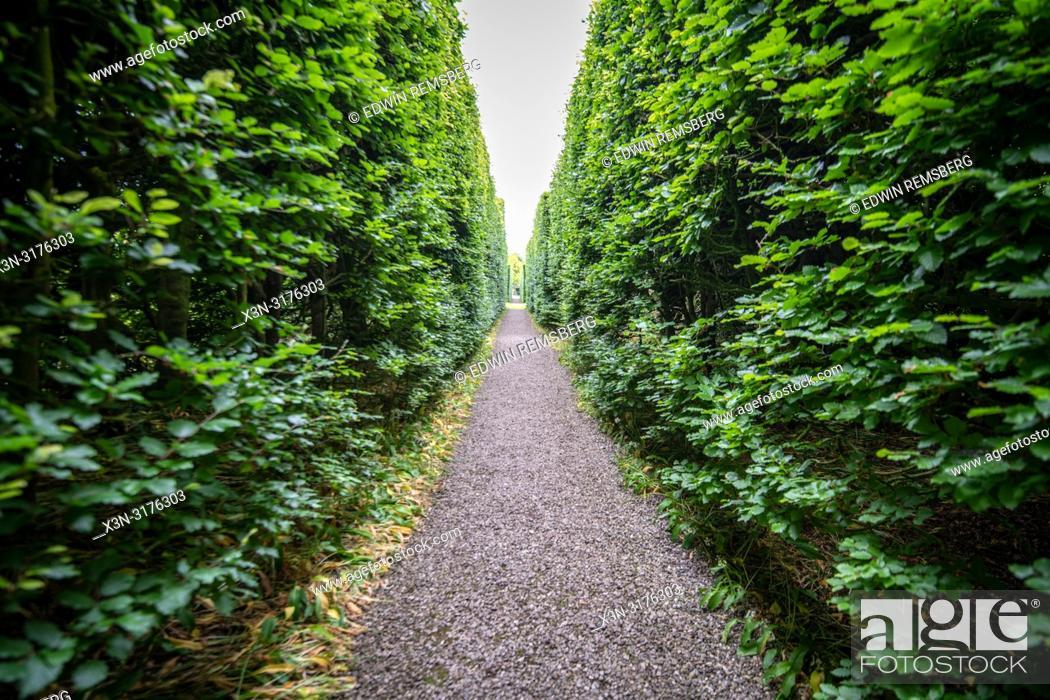 Stock Photo: Symmetric pathway among the trees, Levens Hall , Kendal, Cumbria , UK.