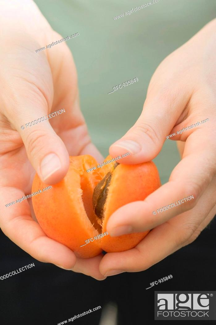 Stock Photo: Halving an apricot.