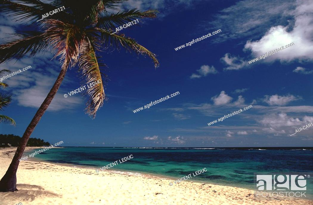 Stock Photo: French Caribbean - Caribbean Islands - Marie Galante - Capesterre - Beach of the Feuillere.
