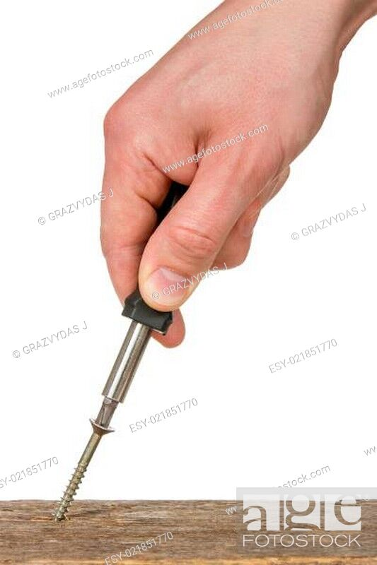 Stock Photo: Screwing a screw into the wood.