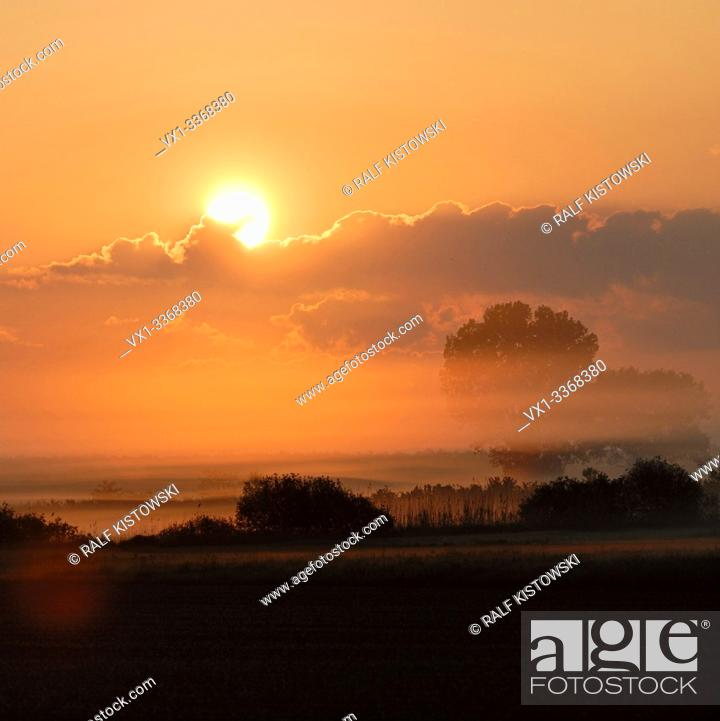 Stock Photo: Sunrise above wet meadows and lines of trees and bushes, rural countryside, sun shining on morning mist, morning mood full of atmosphere.