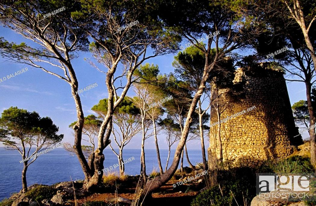 Stock Photo: Torre de sa Pedrissa. Deia. Majorca, Balearic Islands. Spain.