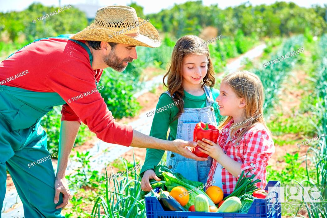 Stock Photo: Farmer man showing vegetables harvest to kid girls in orchard.