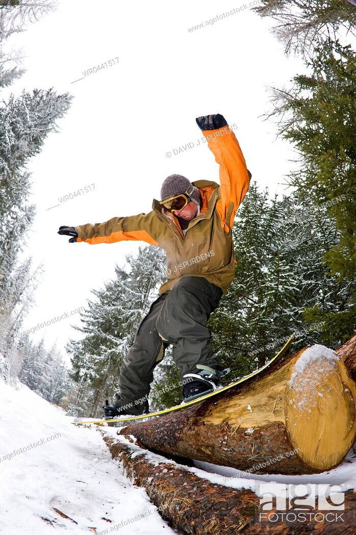 Stock Photo: A snowboarder slides a log in a forest.