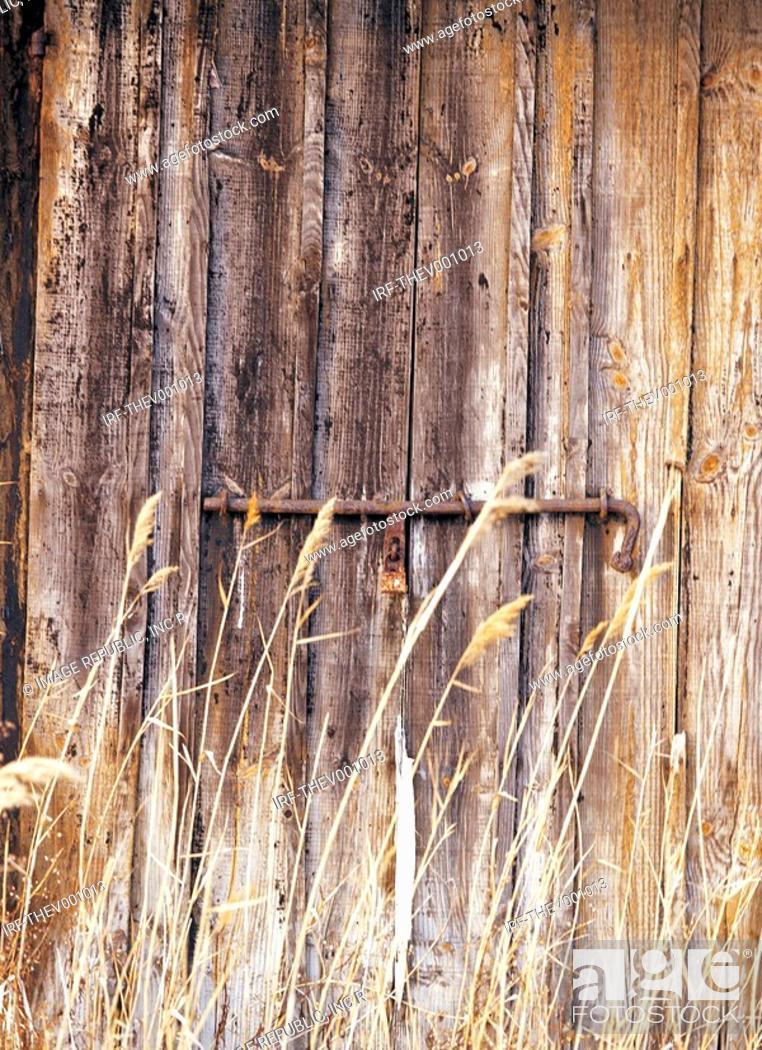 Stock Photo: reed and wooden door.