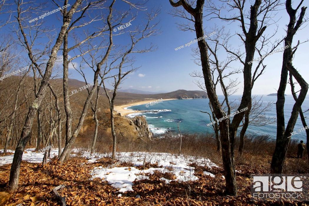 Stock Photo: Petrova cordon. Lazovsky Nature Reserve, Sikhote-Alin mountain range. Primorsky Krai. Japon sea. Russia, Asia.