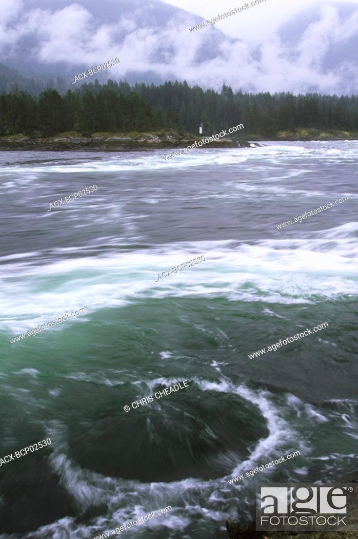 Stock Photo: Sechelt Peninsula, Skookumchuck Narrows Provincial Park near Egmont, British Columbia, Canada.
