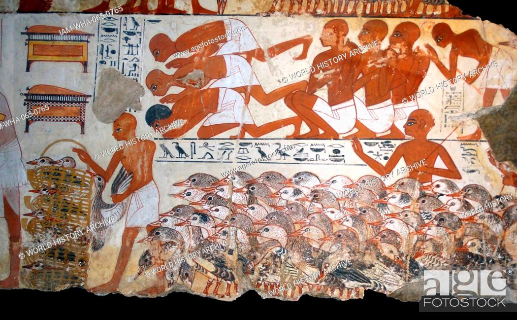 Stock Photo: Fresco from the tomb of Nebamun, Fragment of a polychrome tomb-painting showing mass of geese with their farmers from the presentation of the geese scene.