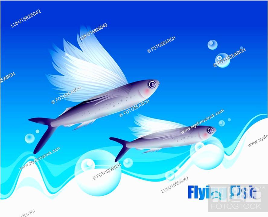 Stock Photo: waterdrop, ocean, fishes, underwater, undersea, sea.