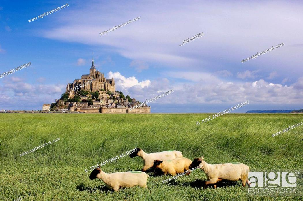 Stock Photo: Mont-Saint-Michel Benedictine abbey  Normandy  France.