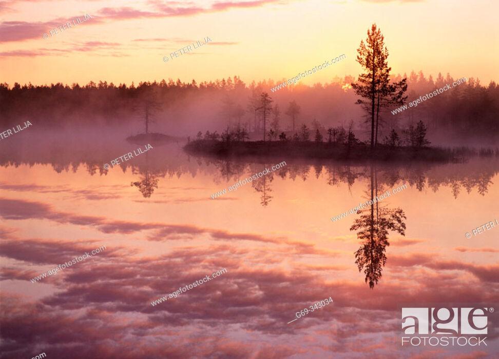 Stock Photo: Misty summernight at lake and sunrise. Byske, Västerbotten, Sweden.