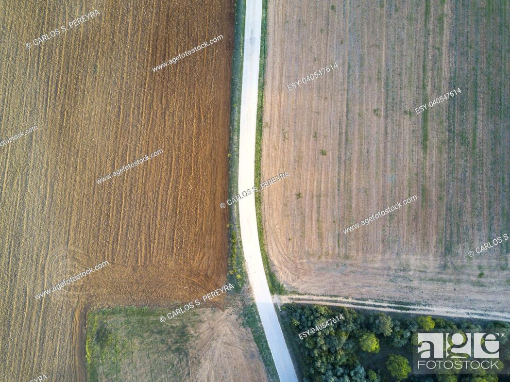 Photo de stock: Abstract landscape made with an aerial shot with a drone of a rural road in the fields during the autumn in the province of Gerona in Catalonia Spain.