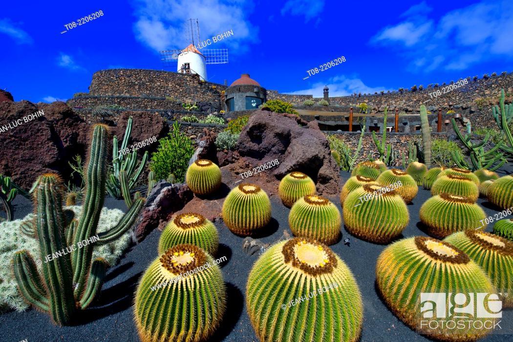 Imagen: spain, canary islands, lanzarote : cactus' garden.