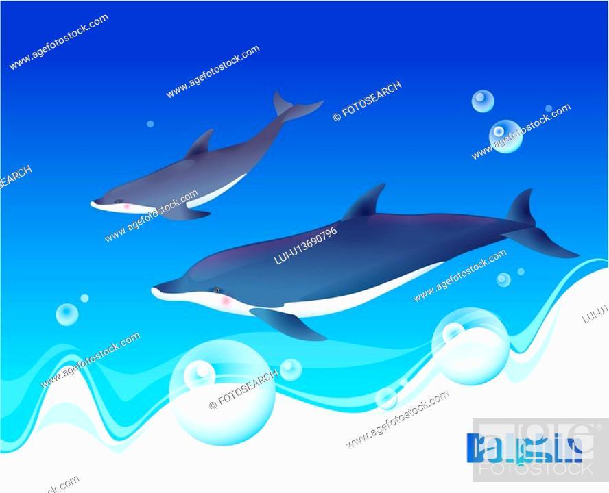 Stock Photo: fish, sea, underwater, undersea, ocean, dolphin.
