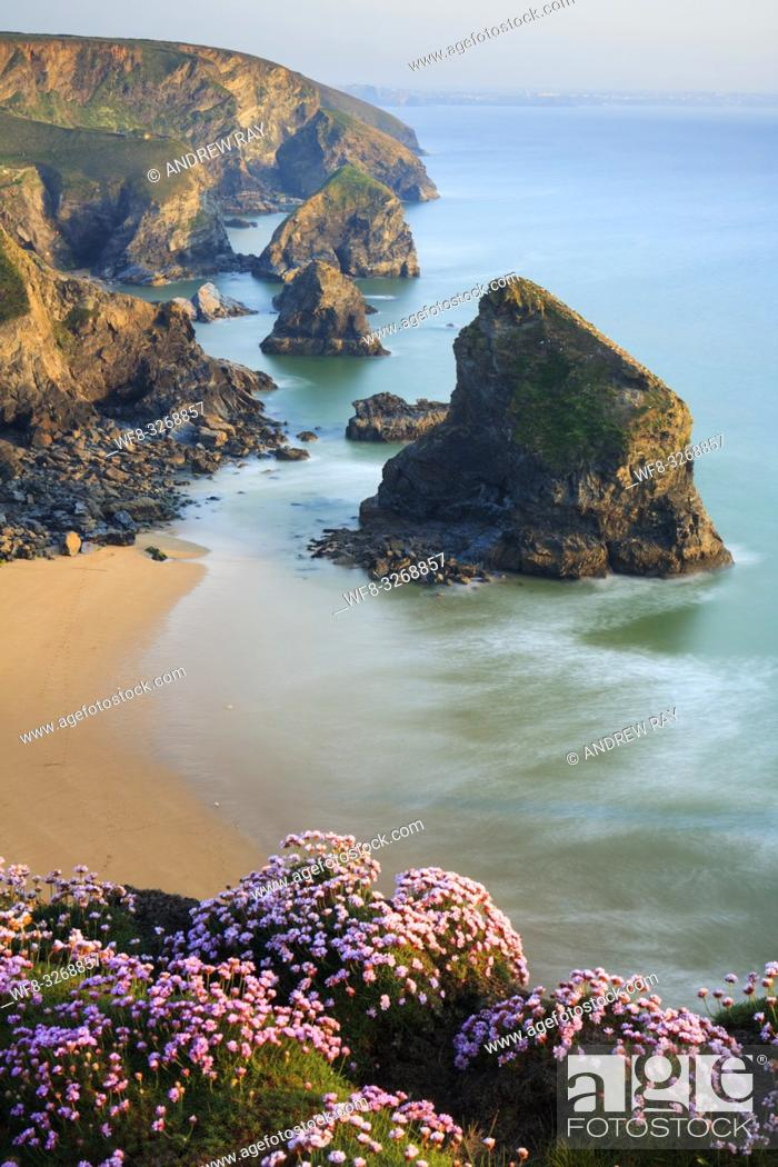Stock Photo: Bedruthan Steps sea stacks on the North Cornish Coast, captured from Park Head in mid May.