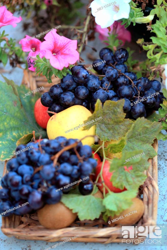 Stock Photo: Still Life with Fruit, grapes, Black, Apple, kiwis, Flowers, petunias.