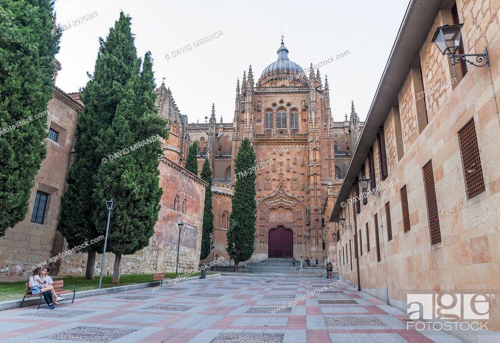 Imagen: Catedral de Salamanca. Ciudad Patrimonio de la Humanidad. Castilla León. España.