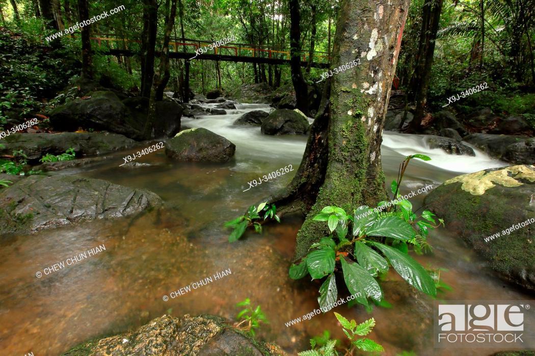 Stock Photo: Stream at serian town, kuching, sarawak, malaysia, borneo.