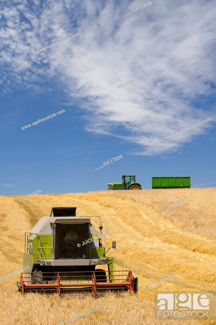 Stock Photo: Harvester in barley field.