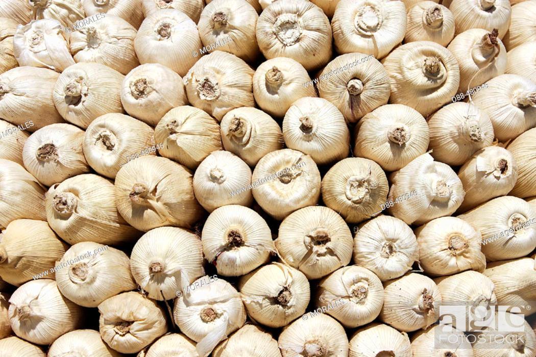 Stock Photo: Corn granary. Tsemay tribe. Ethiopia.