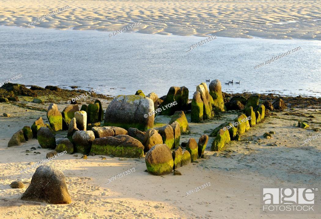 Stock Photo: Prehistoric allee couverte burial dolmen of Guirnivit aka Guinirvit Porz Meur. Baie du Kernic, Plouescat, Finistere, France.