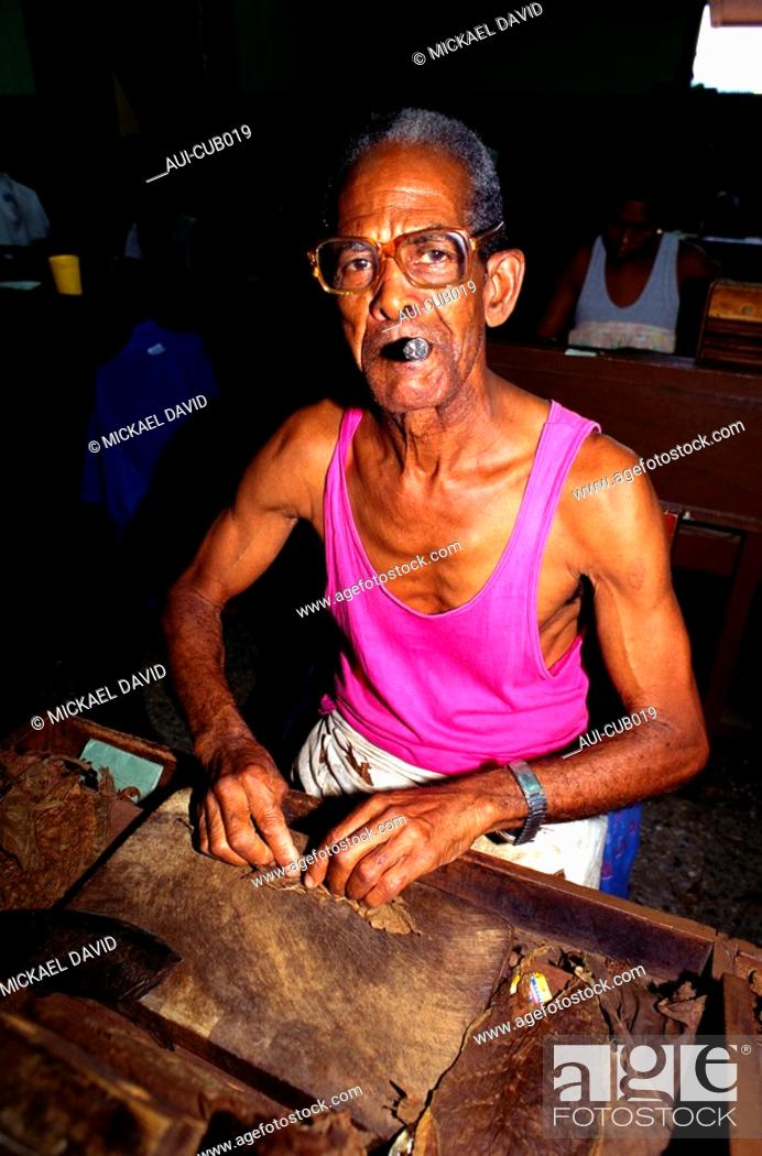 Stock Photo: Cuba - The Havana - Partagas Manufacture.