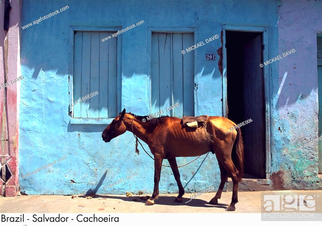 Stock Photo: Brazil - Salvador - Cachoeira.