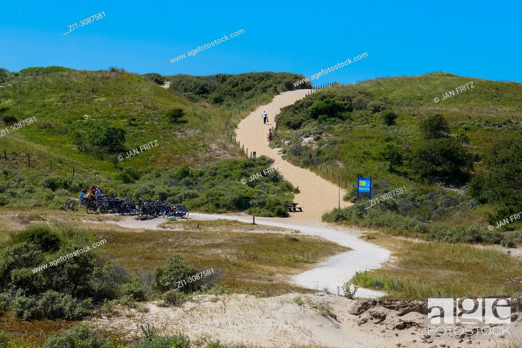 Stock Photo: sandy path over the dunes to the sea at Meyendel, Holland.