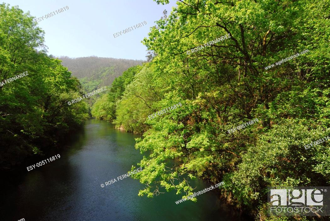 Photo de stock: Eume river and Fragas riparian forest Natural Park, A Coruña, Galicia, Spain.