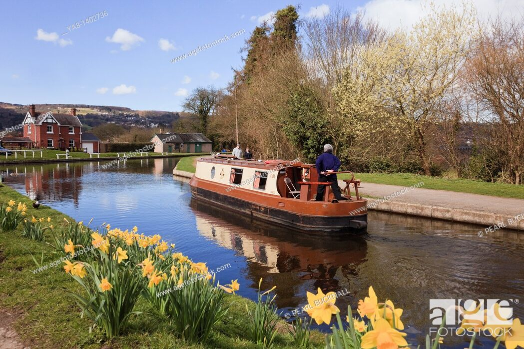 Stock Photo: Froncysyllte, Wrexham, North Wales, UK, Europe  Narrowboat on the Llangollen canal with daffodils in spring.