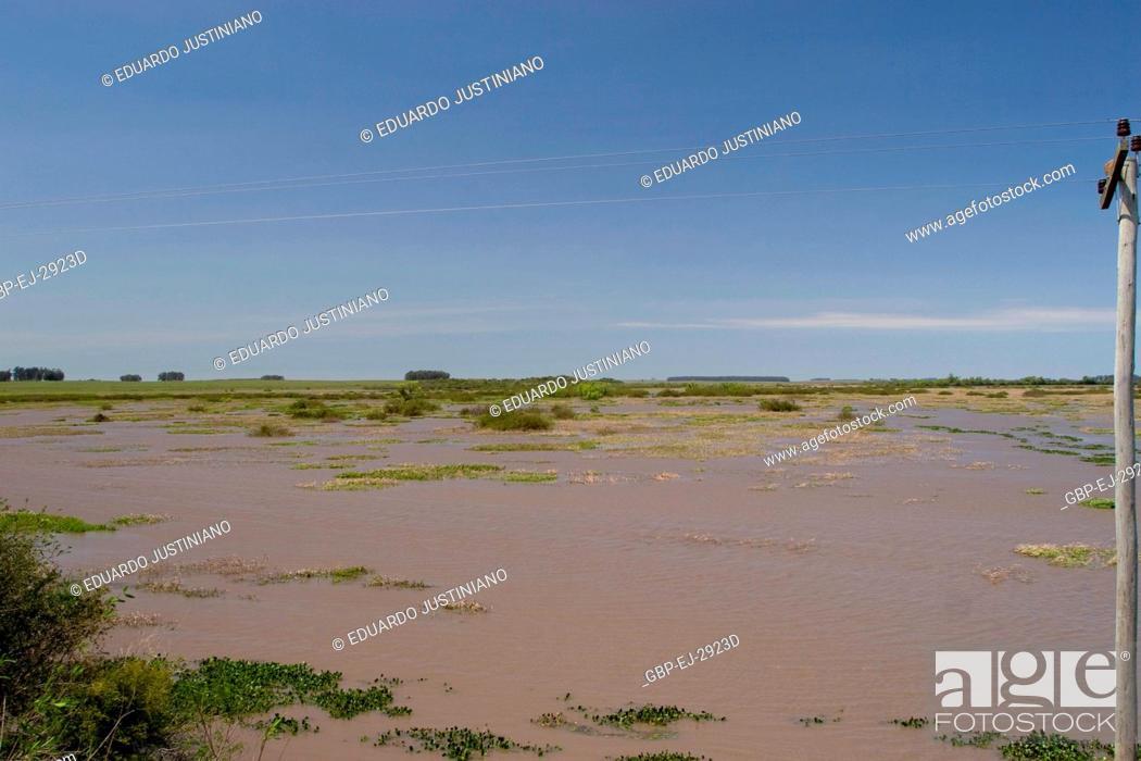 Stock Photo: Flooded sandbank, Flood, Pântano Grande, Rio Grande do Sul, Brazil.