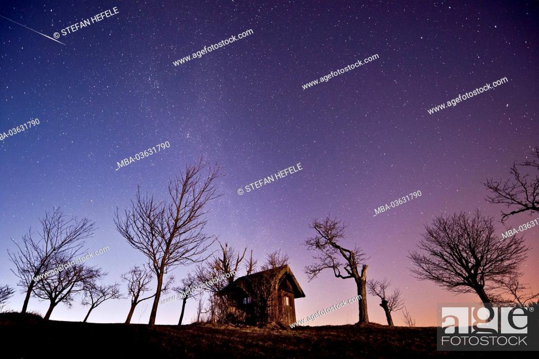 Stock Photo: Germany, Bavaria, Augsburg country, Augsburg-Western Woods Nature Park, Leuthau,.