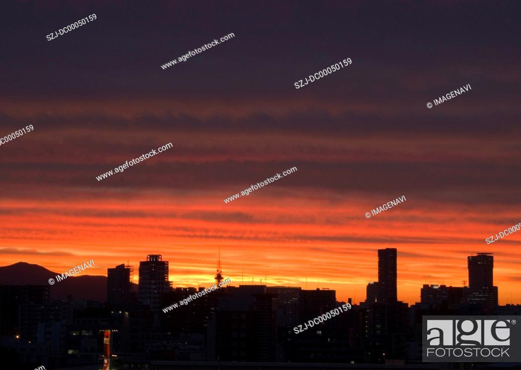 Stock Photo: Cityscape in sunset.