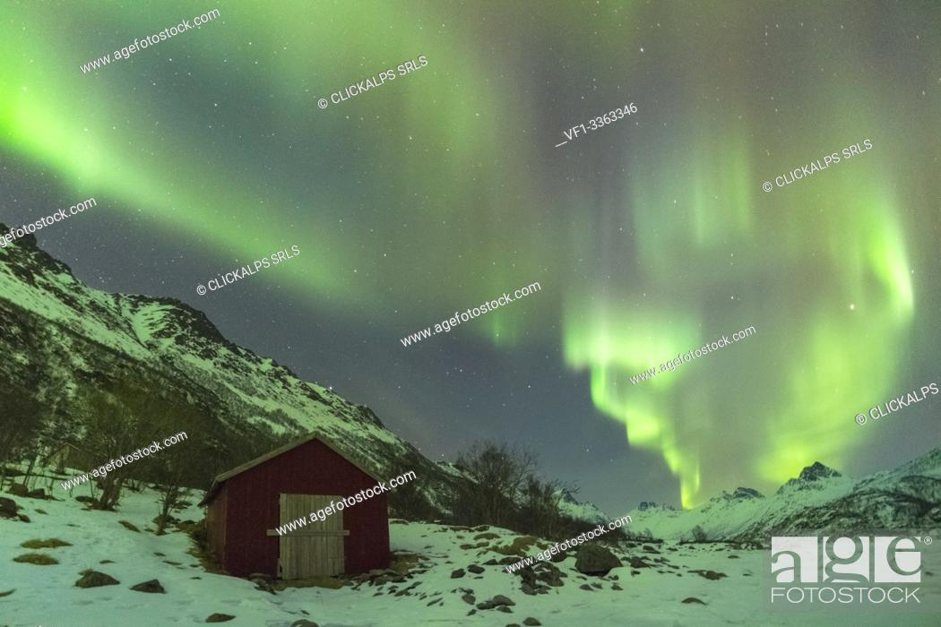 Stock Photo: Northern lights over a red cabin in winter. Kleppstad, Nordland county, Northern Norway, Norway.