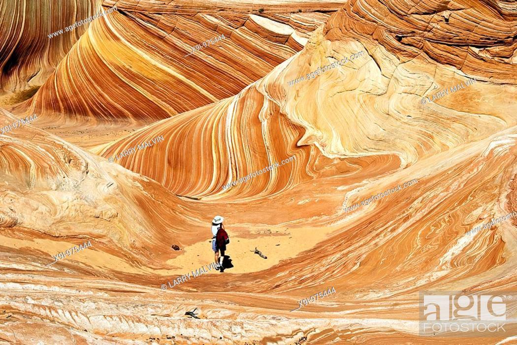 Stock Photo: Hiker in The Wave, Paria Canyon-Vermillion Cliffs Wilderness, Arizona.