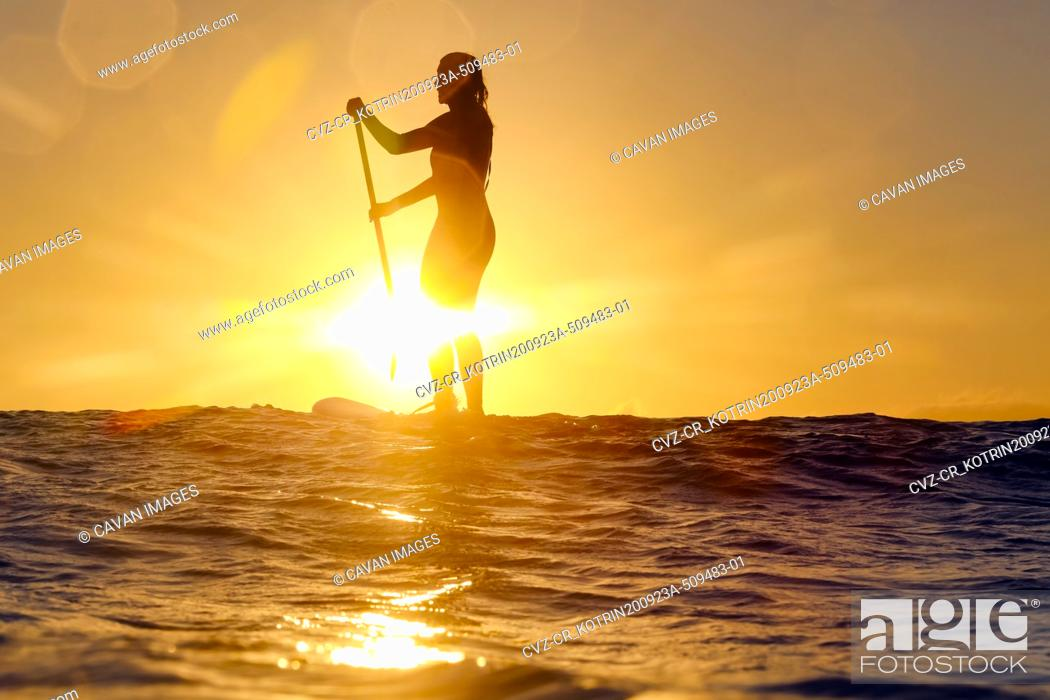 Photo de stock: Female sup surfer at sunset time.