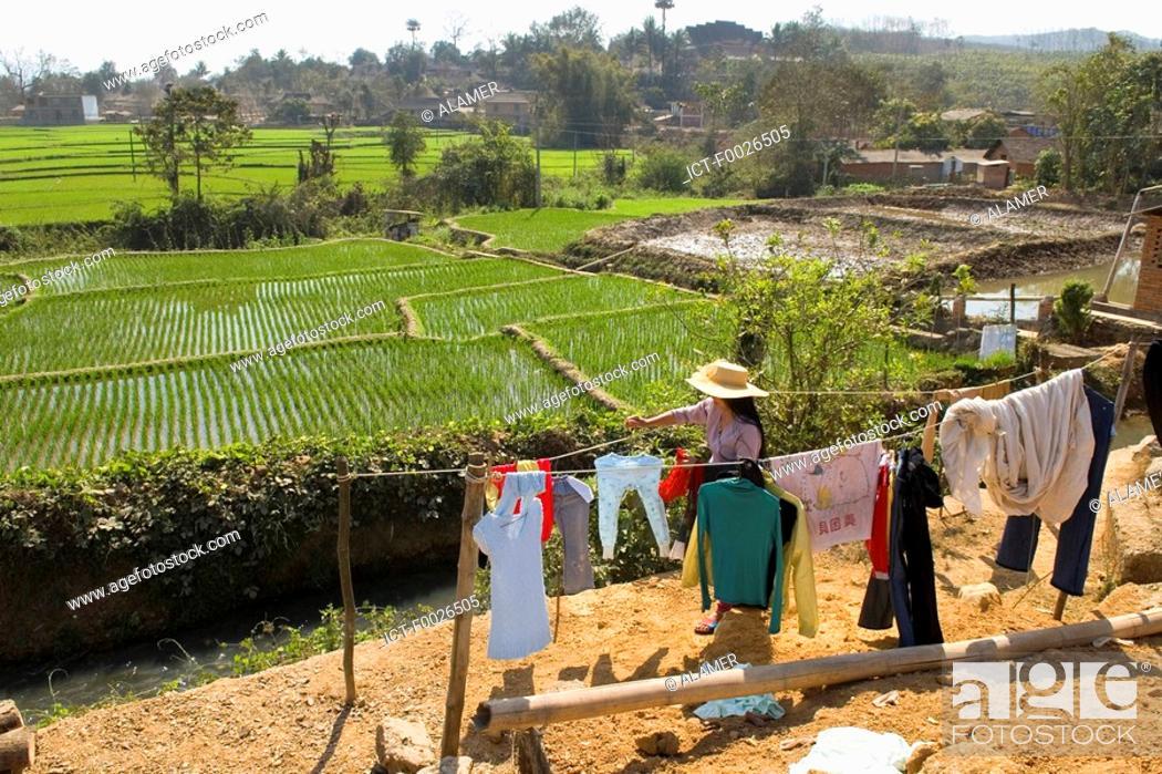 Stock Photo: China, Yunnan, Xishuangbanna, near Damenglong, ricefields.