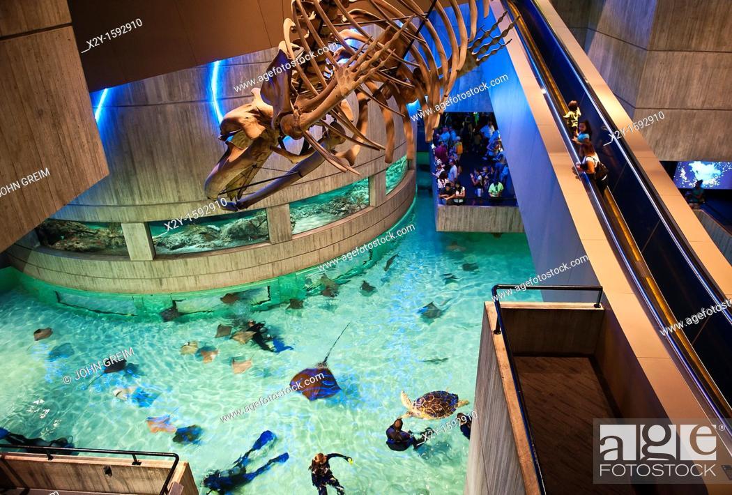 Stock Photo National Aquarium Inner Harbor Baltimore Maryland Usa